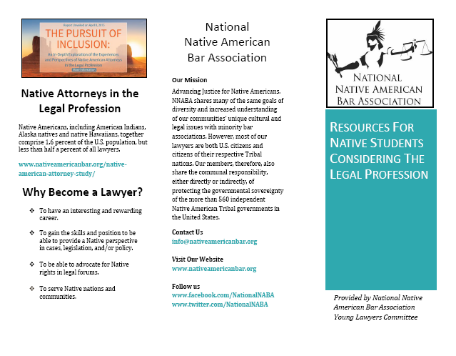 Young Lawyers Committee – National Native American Bar